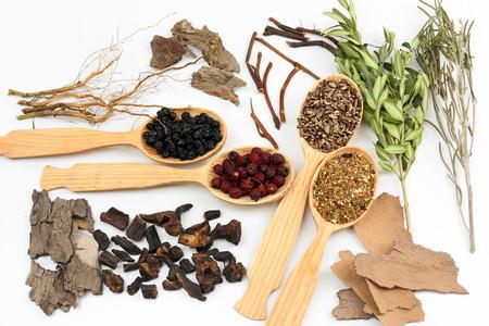 medicina tradicional china: Ingredientes de la medicina tradicional china a base de hierbas, primer plano Foto de archivo