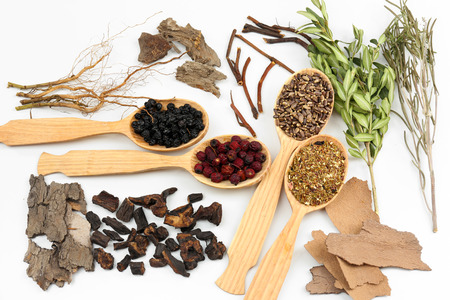 traditional wellness: Traditional chinese herbal medicine ingredients, close-up Stock Photo
