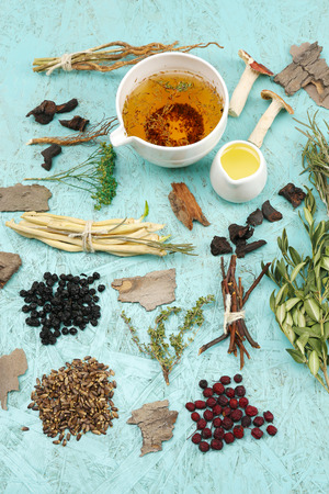 plant medicine: Traditional chinese herbal medicine ingredients, close-up Stock Photo