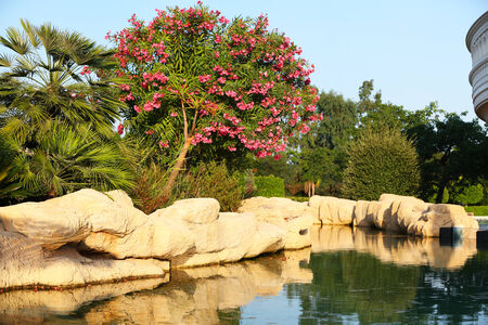 escapement: Natural landscaping. Lake with stones