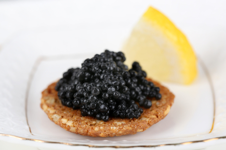 Black caviar on crispy bread on plate closeup photo