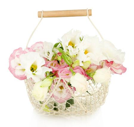 Beautiful eustoma flowers in basket, isolated on white photo