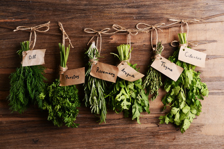 herb: Different fresh herbs on wooden background