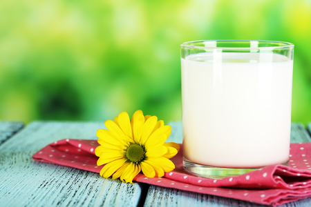 laconic: Milk in glass on napkin on natural background Stock Photo