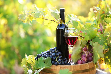 Tasty wine on wooden barrel on grape plantation background 免版税图像
