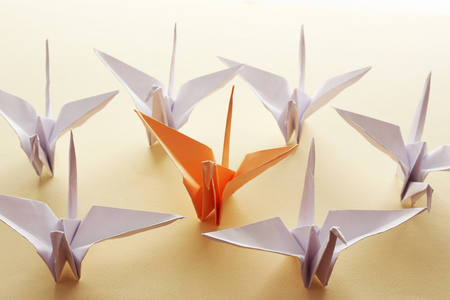 individuality: Individuality concept. Origami birds on light background