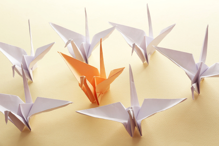 distinctive: Individuality concept. Origami birds on light background