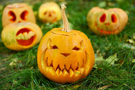 terrify: Pumpkins for holiday Halloween on grass background Stock Photo