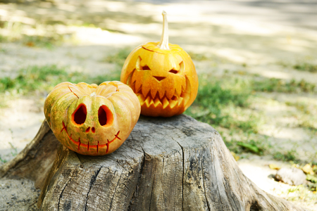 terrify: Pumpkins for holiday Halloween on old tree stump Stock Photo