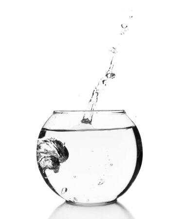 fish bowl: Fish bowl isolated on white Stock Photo