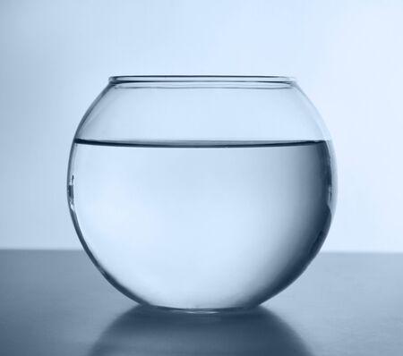 bol de poisson isolé sur blanc