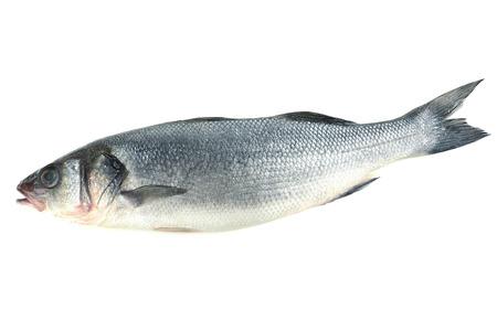 Verse vis op wit wordt geïsoleerd