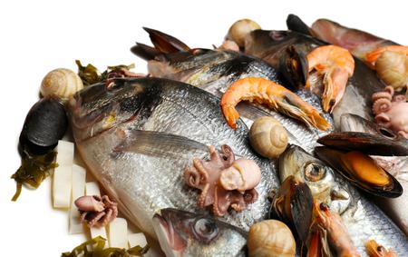 Verse vangst van vis en andere zeevruchtenclose-up