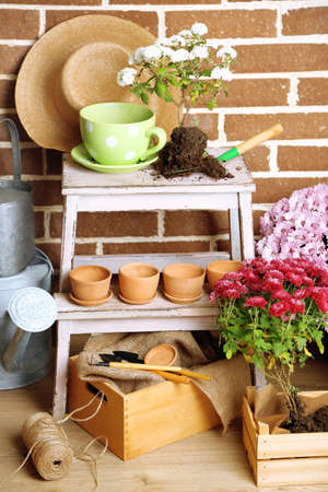 Flowers in pot on stepladder, potting soil, watering can and plants on bricks background. Planting flowers concept Stock Photo