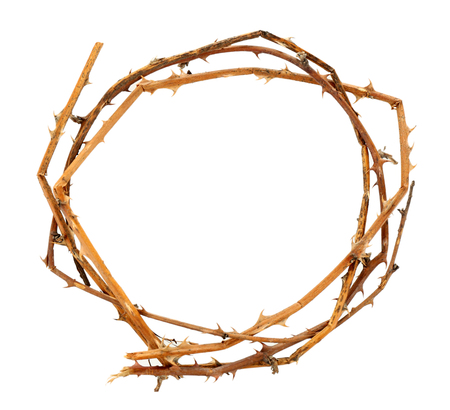 Crown of thorns, isolated on white Banco de Imagens
