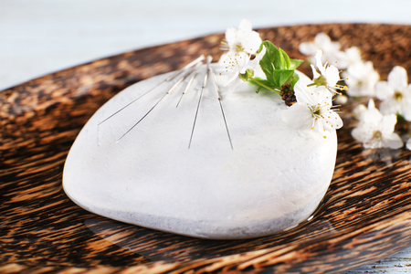 Acupuncture needles on wooden plate with pebble and flowering branch, closeup Standard-Bild