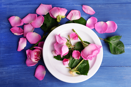 Beautiful pink roses in white plate on wooden table, top view