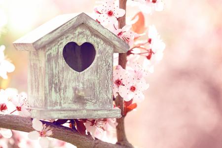 Decorative nesting box on bright background Stock Photo
