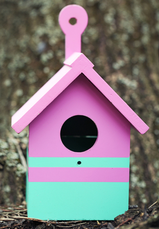Decorative nesting box on wooden background