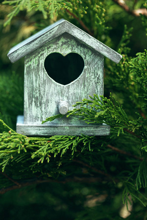 Decorative nesting box on branch, on green background Stock Photo