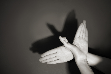 Hands gesture like dove on gray background Фото со стока