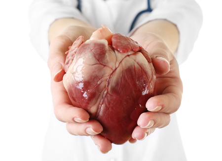 Coeur dans les mains du médecin isolé sur blanc
