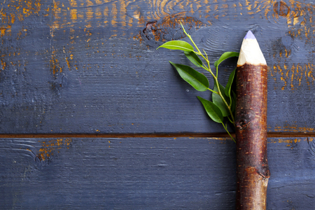 Wooden pencil with leaf on wooden background Stok Fotoğraf