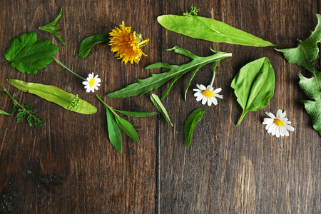 Various medicinal plants on wooden background