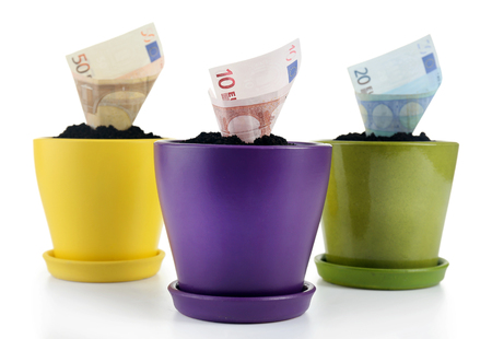Growing money in colorful flowerpots isolated on white 版權商用圖片 - 101312703