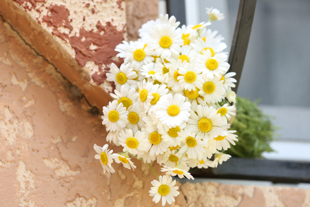Beautiful bouquet of daisies near window outdoors