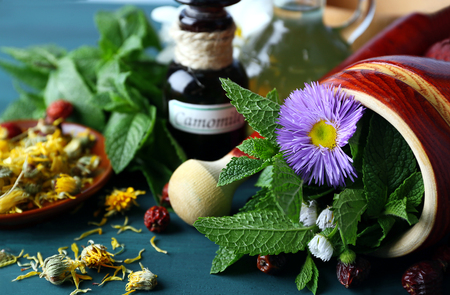 Herbs, berries and flowers on color  wooden table background Stock Photo