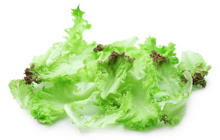 Fresh green lettuce isolated on white