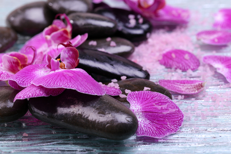 Violet orchid and zen stones close-up 스톡 콘텐츠