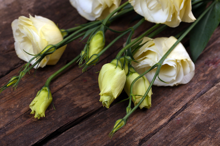 Beautiful eustoma on wooden background Stock fotó