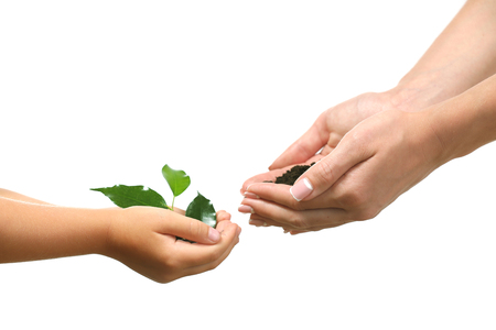 Female and child handfuls with soil and small green plant isolated on white Foto de archivo - 102251789