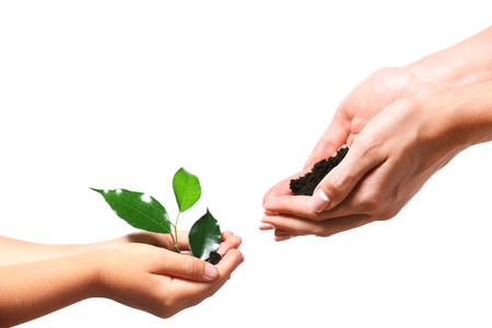 Female and child handfuls with soil and small green plant isolated on white Foto de archivo - 102251903