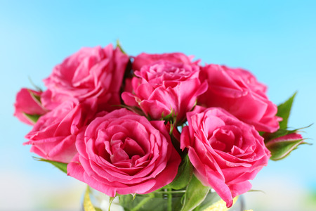 Beautiful roses in vase on bright background