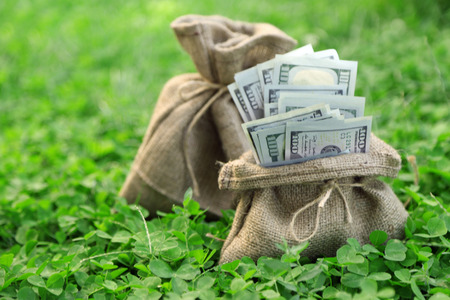 Lot of one hundred dollar bills in bags on grass background