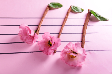 Creative music notes made of flowers on pink background
