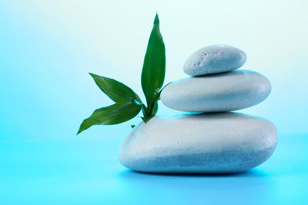 Spa stones and eaves on blue background Zdjęcie Seryjne