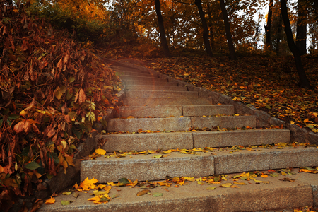 Stairs in the autumn park