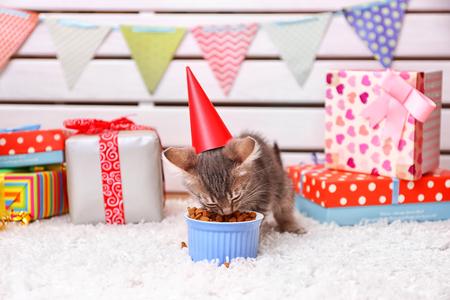 Cute little grey kitten celebrating birthday Stock Photo