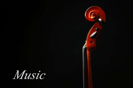 Violin neck on dark background