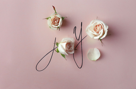 Inscription joy with beige roses on pink background Stock Photo