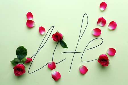 Inscription life with pink roses on green background 版權商用圖片