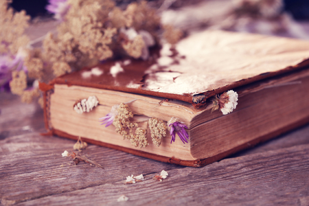 Book with dried flowers on wooden table, close up
