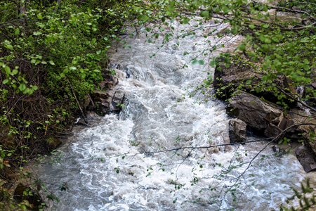 Wide stream in mountain forest
