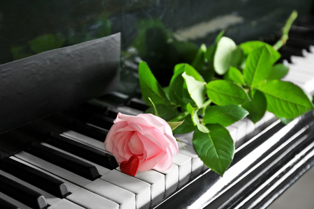 Beautiful pink rose and little red heart on piano keys, close up