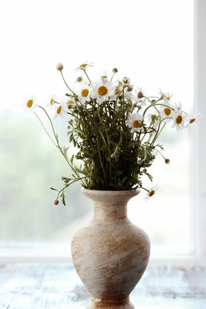 Chamomile bouquet in vase on windowsill Archivio Fotografico