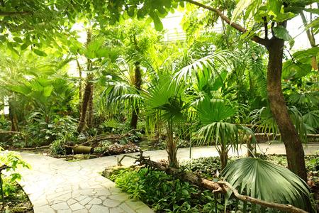 Botanical garden in summertime